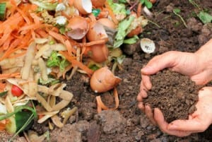 Learn how to Compost Workshop! @ Festina Lente