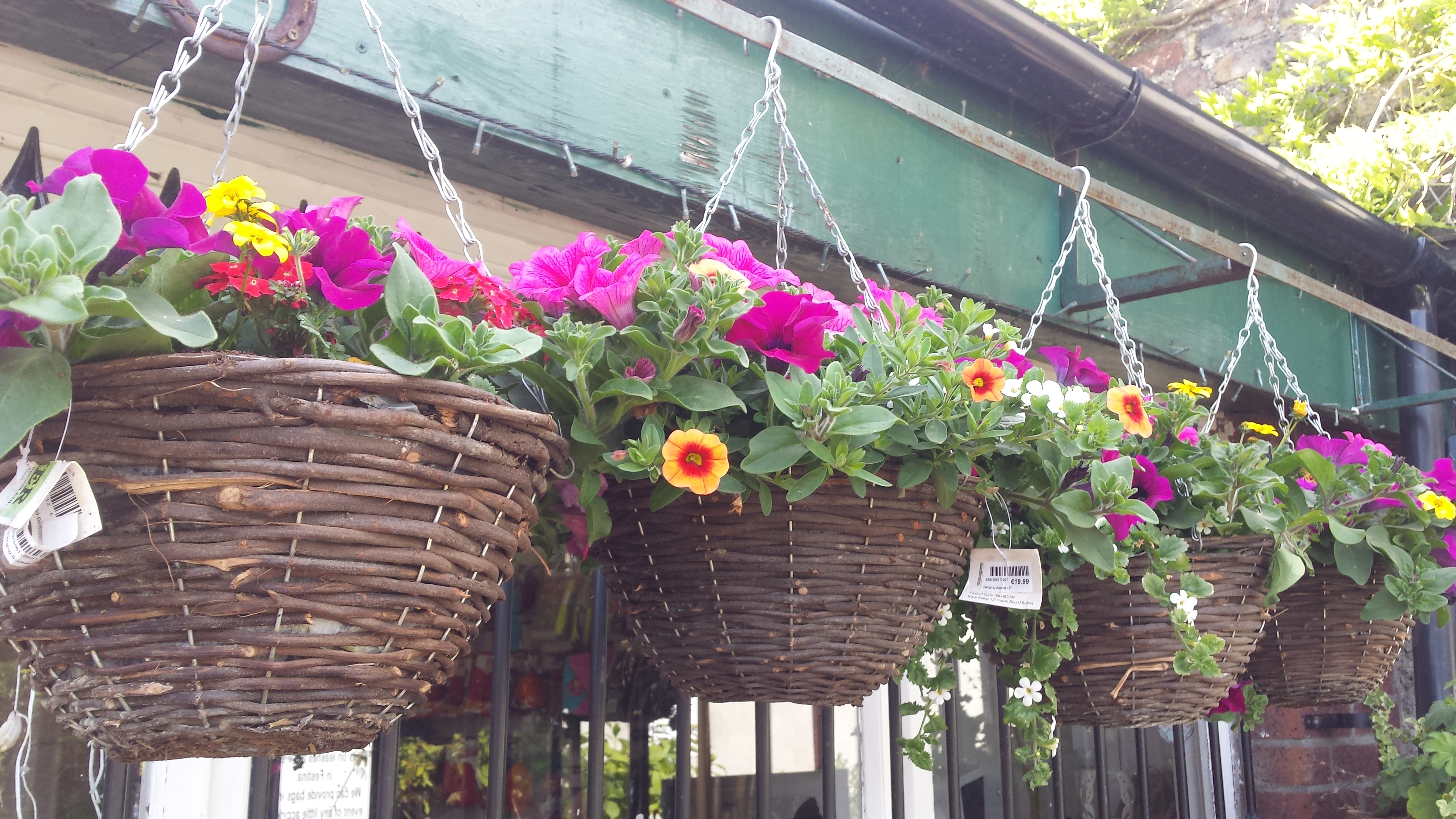 How To Make Round Hanging Flower Baskets : We will plant up your garden hanging baskets containers