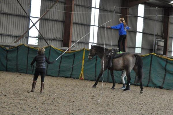 vaulting-stand